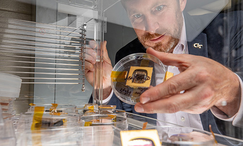 GTRI Principal Research Engineer Jud Ready holds a sample of a perovskite solar cell.
