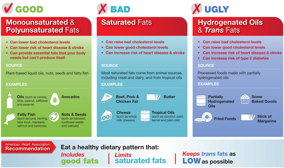 Fats: the Good, the Bad and the Ugly