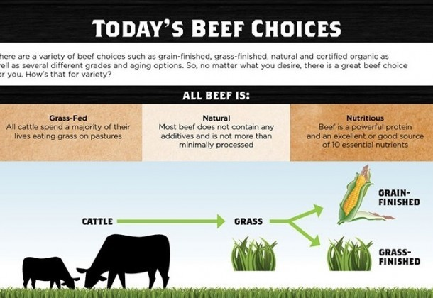 Photo for Today's Beef Choices